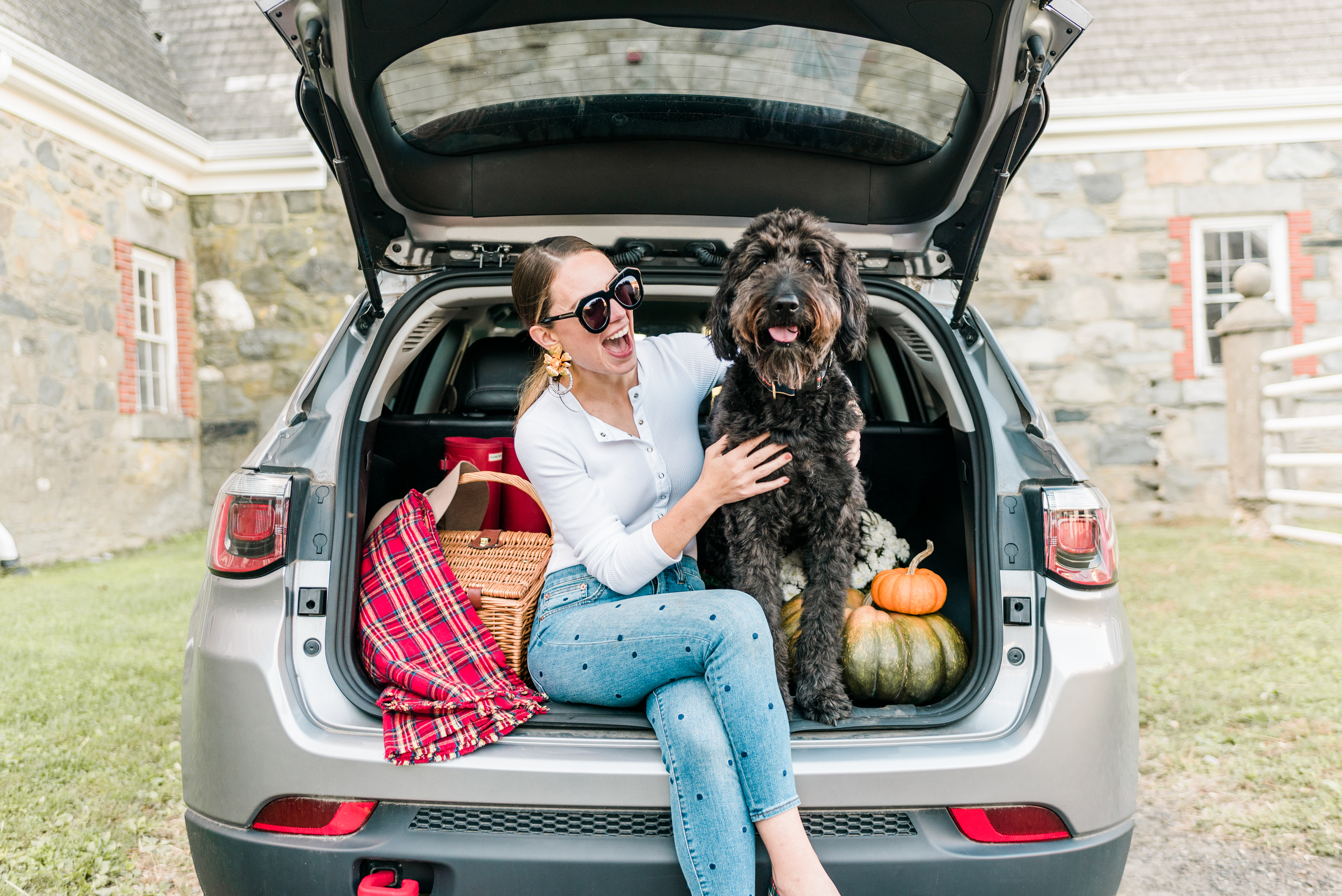 Nutrition, Lifestage and your dog