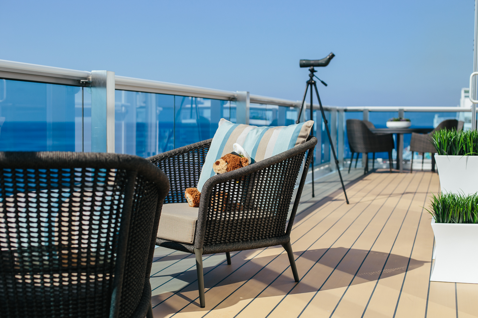 Stanley Watching The Ocean On Board The Sky Princess